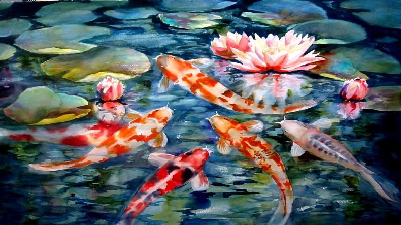 Fish Ponds 1